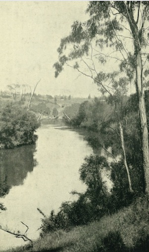 Stretch of Yarra above Macaulays Boathouse
